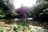 阿拉斯加''愛之船''之旅-布查花園驚艷:93710004.jpg