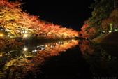 日本北關東東北行-8弘前城-櫻花紅葉園區驚豔楓紅.....:A81Q0696.JPG