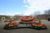 日本關西賞櫻深度之旅-鳥取花迴廊42-8:A81Q1635.JPG