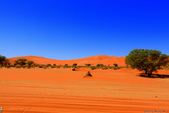 納米比亞紅色沙漠-1200公尺世界最高的-就在死亡谷上方:IMG_6983.jpg