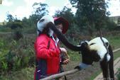 美女們被狐猴溫馨親切有禮的親親_在馬達加斯加-狐猴島Lemur Island:IMG_0357.jpg