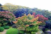 日本四國人文藝術+楓紅深度之旅-栗林公園 53-8:A81Q9714.JPG