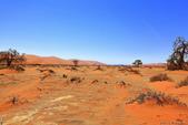 納米比亞紅色沙漠-1200公尺世界最高的-就在死亡谷上方:IMG_6974.jpg