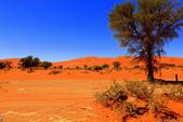 納米比亞紅色沙漠-1200公尺世界最高的-就在死亡谷上方:IMG_6986.jpg
