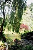 阿拉斯加''愛之船''之旅-布查花園驚艷:93710007.jpg