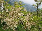 阿爾巴尼亞_喀魯耶山頭城KRUJA_史肯伯格博物館:DSC00350A阿爾巴尼亞__喀魯耶山頭城景緻.JPG