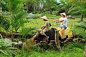 15-5-峇里島-Safari Marine Park野生動物園:IMG_1194峇里島-Safari Marine Park野生動物園.jpg