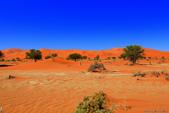 納米比亞紅色沙漠-1200公尺世界最高的-就在死亡谷上方:IMG_6987.jpg