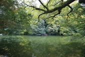 日本四國人文藝術+楓紅深度之旅-栗林公園 53-8:A81Q9720.JPG