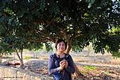 19-18塞普路斯-拉那卡-帕佛斯PAROS考古遺跡區域UNESCO 1980年-行政長官之宮殿-:IMG_4333塞普路斯-拉那卡-PAROS考古遺跡區域UNESCO-行政長官之宮殿.jpg