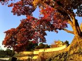 日本四國人文藝術+楓紅深度之旅-姬路城-世界文化遺產-日本國寶53-47:IMG_8077.JPG