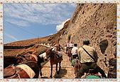 15-希臘Greece聖特里尼SANTORINI費拉碼頭騎驢爬懸崖:IMG_7377.jpg