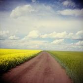 神奇美麗的路徑 ~ amazing paths:ATT0009916.jpg