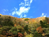 日本四國人文藝術+楓紅深度之旅-別府峽楓葉散策53-23:IMG_5530.JPG