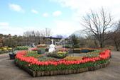 日本關西賞櫻深度之旅-鳥取花迴廊42-8:A81Q1625.JPG