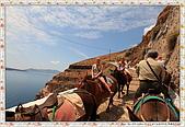 15-希臘Greece聖特里尼SANTORINI費拉碼頭騎驢爬懸崖:IMG_7380.jpg
