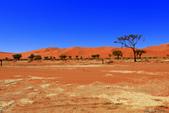 納米比亞紅色沙漠-1200公尺世界最高的-就在死亡谷上方:IMG_6990.jpg