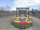 日本關西賞櫻深度之旅-鳥取花迴廊42-8:IMG_2314.JPG