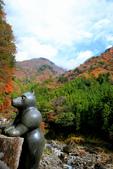 日本四國人文藝術+楓紅深度之旅-別府峽楓葉散策53-23:A81Q0029.JPG