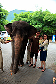 15-5-峇里島-Safari Marine Park野生動物園:IMG_1198峇里島-Safari Marine Park野生動物園.jpg