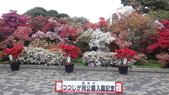 日本12天賞紫藤....VIP團之旅34-34笠間杜鵑花公園篩選分享:DSC01009.JPG