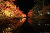日本北關東東北行-8弘前城-櫻花紅葉園區驚豔楓紅.....:A81Q0690.JPG