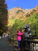 日本四國人文藝術+楓紅深度之旅-別府峽楓葉散策53-23:IMG_5506.JPG