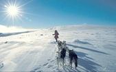 緣,是人間一種看不見的引力  雪景美圖21幅+好文章 分享您囉!:圖片2.jpg