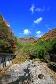 日本四國人文藝術+楓紅深度之旅-別府峽楓葉散策53-23:A81Q0061.JPG