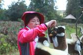 美女們被狐猴溫馨親切有禮的親親_在馬達加斯加-狐猴島Lemur Island:IMG_0364.jpg
