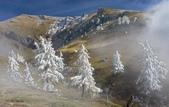 緣,是人間一種看不見的引力  雪景美圖21幅+好文章 分享您囉!:圖片7.jpg
