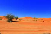 納米比亞紅色沙漠-1200公尺世界最高的-就在死亡谷上方:IMG_6977.jpg