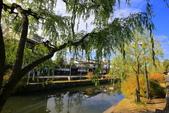 日本四國人文藝術+楓紅深度之旅-倉敷城美觀地散策53-45:A81Q0533.JPG