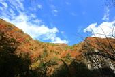 日本四國人文藝術+楓紅深度之旅-別府峽楓葉散策53-23:A81Q0051.JPG