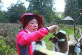美女們被狐猴溫馨親切有禮的親親_在馬達加斯加-狐猴島Lemur Island:IMG_0365.jpg