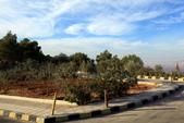 14-11約旦JORDAN--希臘東正教聖喬治教堂:IMG_9476H約旦JORDAN-尼伯山(MOUNT NEBO)教堂-往東正教堂途中街景.JPG