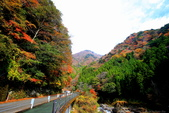 日本四國人文藝術+楓紅深度之旅-別府峽楓葉散策53-23:A81Q0031.JPG