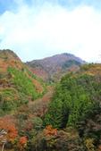 日本四國人文藝術+楓紅深度之旅-別府峽楓葉散策53-23:A81Q0034.JPG
