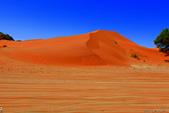 納米比亞紅色沙漠-1200公尺世界最高的-就在死亡谷上方:IMG_6978.jpg