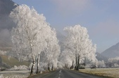 緣,是人間一種看不見的引力  雪景美圖21幅+好文章 分享您囉!:圖片16.jpg