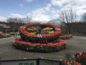 日本關西賞櫻深度之旅-鳥取花迴廊42-8:IMG_2292.JPG