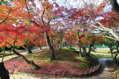 日本四國人文藝術+楓紅深度之旅- 秋之岡山後樂園53-44:A81Q0497.JPG