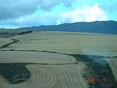 南非探索之旅:DSC01642南非開普敦-假勝地沿路風景