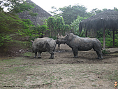 15-5-峇里島-Safari Marine Park野生動物園:IMG_6566峇里島-Safari Marine Park野生動物園.jpg