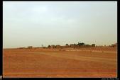 摩洛哥-北非撒哈拉沙漠巡禮(西葡摩31天深度之旅):IMG_6585H.jpg