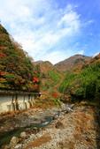 日本四國人文藝術+楓紅深度之旅-別府峽楓葉散策53-23:A81Q0024.JPG
