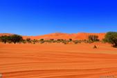 納米比亞紅色沙漠-1200公尺世界最高的-就在死亡谷上方:IMG_6981.jpg