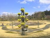 日本關西賞櫻深度之旅-鳥取花迴廊42-8:IMG_2365.JPG