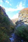 日本四國人文藝術+楓紅深度之旅-別府峽楓葉散策53-23:A81Q0045.JPG