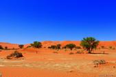 納米比亞紅色沙漠-1200公尺世界最高的-就在死亡谷上方:IMG_6988.jpg